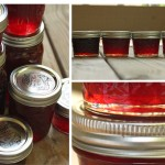 Strawberry Jam, Part III: Recipes & Results
